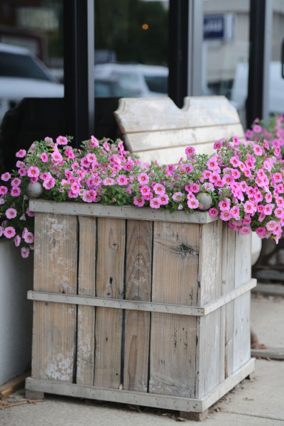 This wooden flower box has an identical mate on the other side of the bench and can also be found in downtown Stillwater.