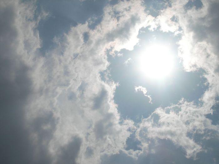 Слънчеви лъчи