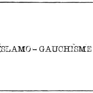 Islamo-gauchisme in Frankreich – ein populistischer Kampfbegriff der extremen Rechten oder eine soziale Tatsache?