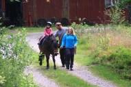 På häst i Skogen