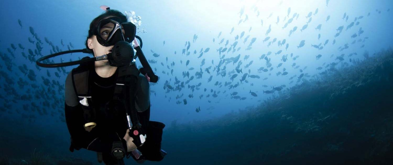 Stingray Divers - Probiere das Tauchen aus