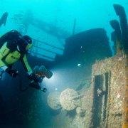Stingray Divers - Wracktauchen Peltastis