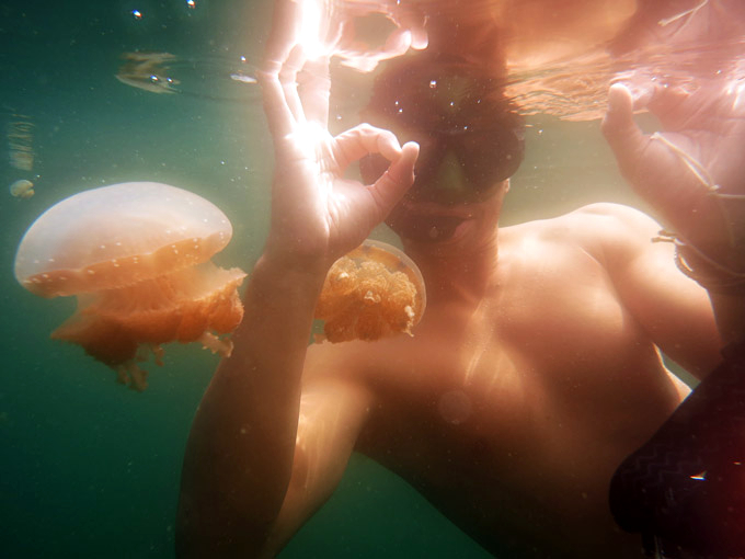 Swimming between thousands of harmless jelly fish was an unreal experience!