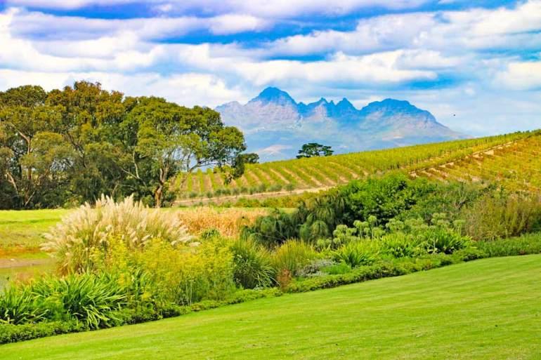 Peaceful landscape at Jordan wine farm near Stellenbosch