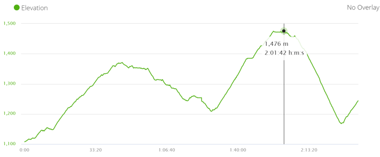 Elevation profile walking from Ghermu to Jagat on the footpath