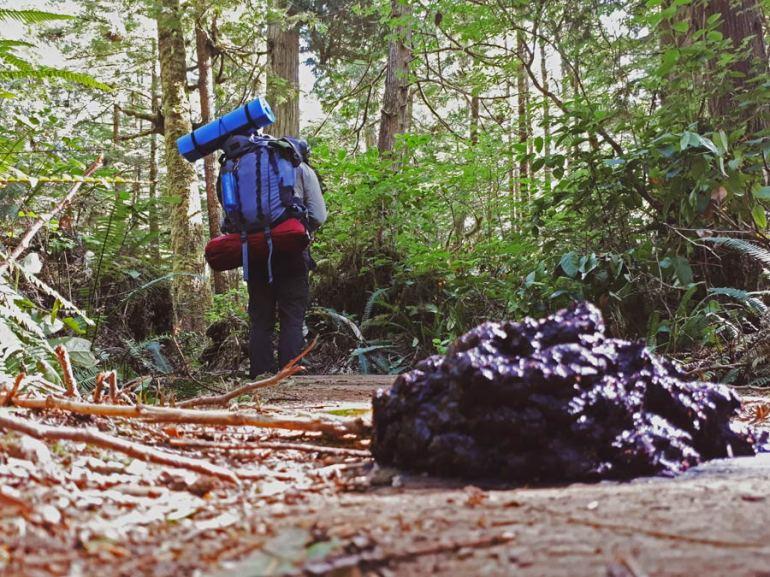 Bear poop juan de fuca stingy nomads
