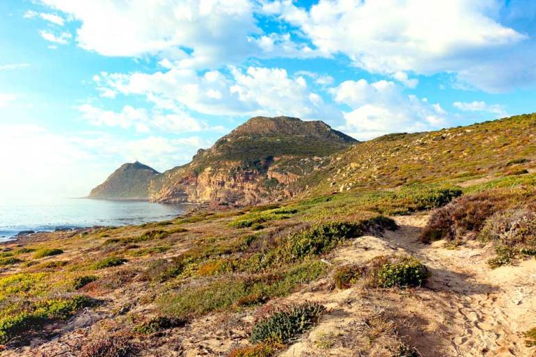 One of the capes in Cape Point National Park at sunrise