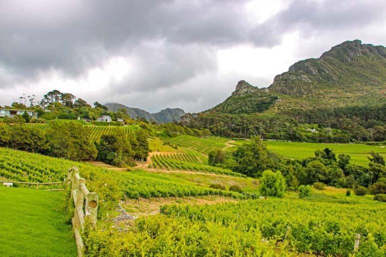 Spectacular views of the Constantia wine valley from the Constantia Glen wine estate.