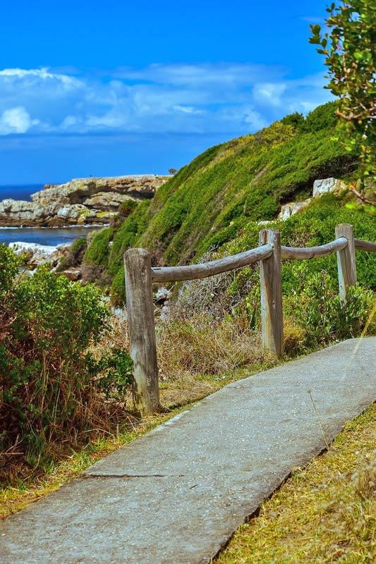 cliff path hermanus