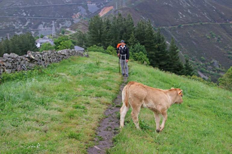 Campbell walking in the mountains on the Camino