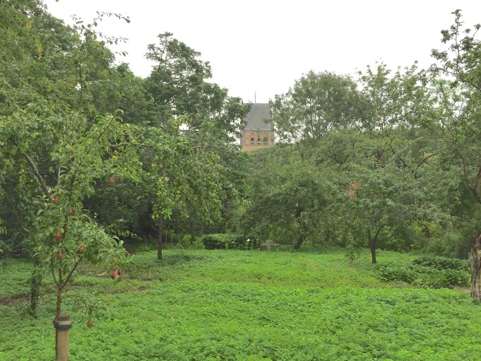 Overview garden with vegetable garden circle and view of the church. 17 August 2015.