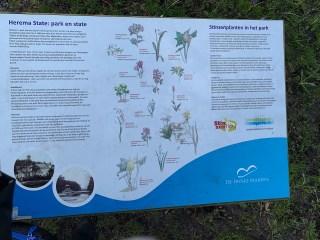 Stinzenplanten informatie, Heerema State (Joure).