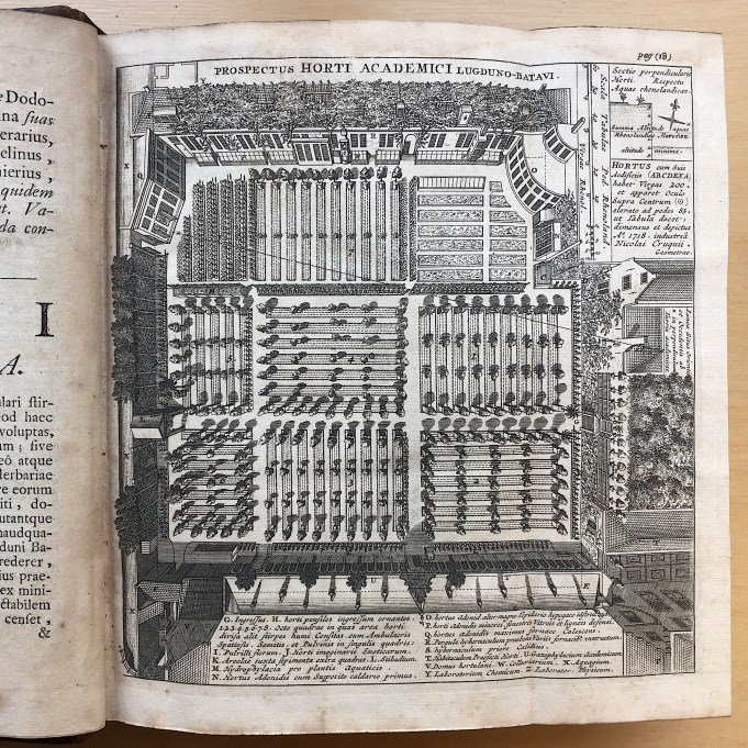Boerhaave Index Plantarum 1720