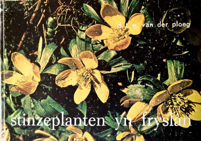 Stinzeplanten yn Fryslân