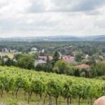 Besuch im Weingut Klaus Zimmerling