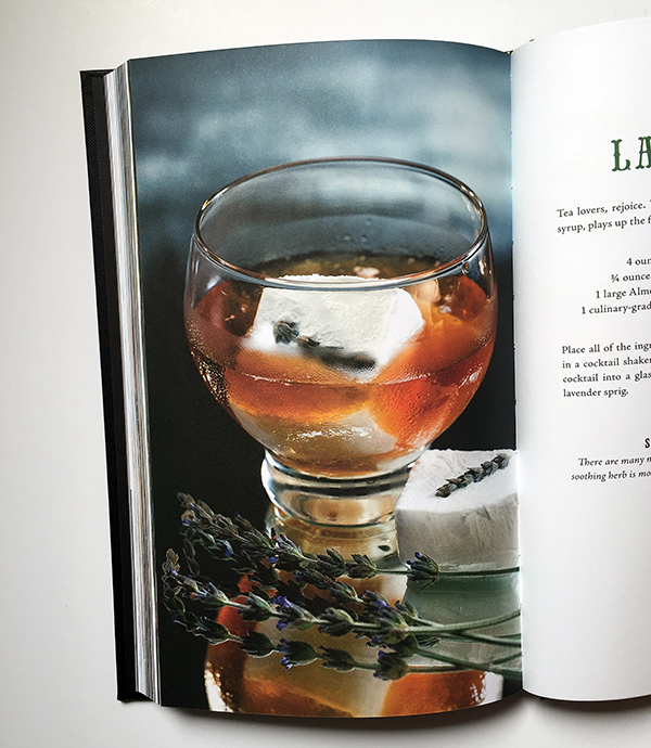 Giveaway: Zen and Tonic Cocktail book and grab bag // stirandstrain.com