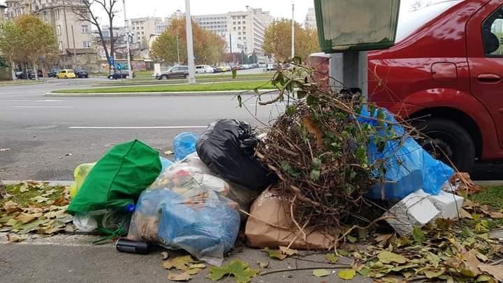 Ce a făcut un primar din Dâmbovița, după ce un bărbat și-ar fi aruncat gunoaiele pe pajiştea comunei