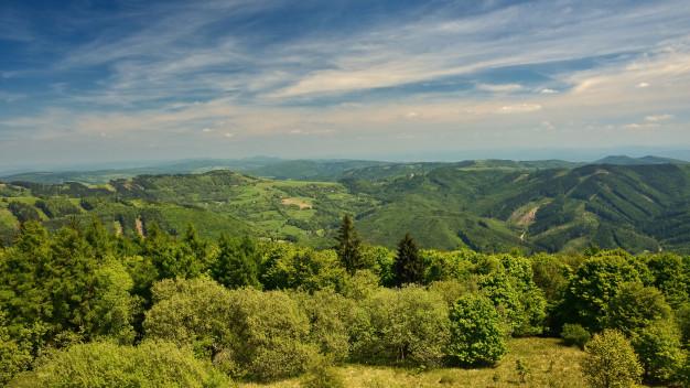 Fundatia Conservation Carpathia a obtinut 500 milioane de dolari pentru a crea un parc national in Muntii Fagaras