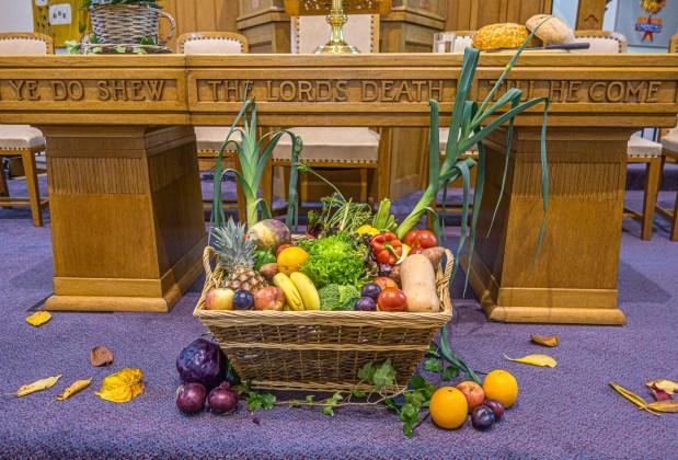 harvest 4 (1 of 1)