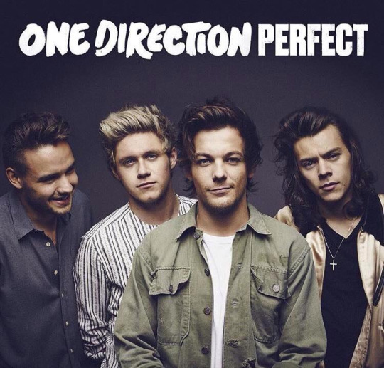 "One Direction Release ""Perfect"" Music Video"