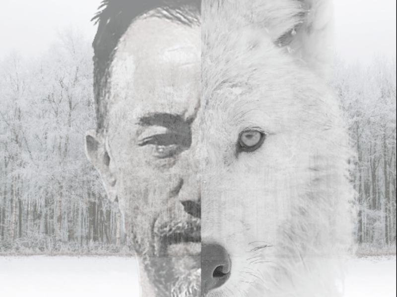 "Wolfe Hybrid premieres new single ""Survivor"""