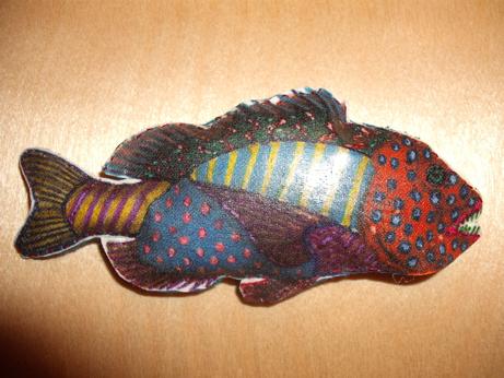 My little multicoloured fish!