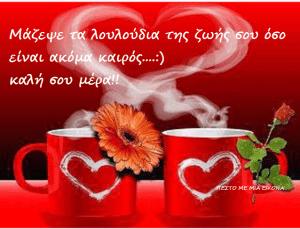 Read more about the article Μάζεψε τα λουλούδια της ζωής σου όσο είναι ακόμα καιρός….:) καλή σου μέρα!!