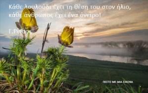 Read more about the article Κάθε λουλούδι έχει τη θέση του στον ήλιο, κάθε άνθρωπος έχει ένα όνειρο!!🌻