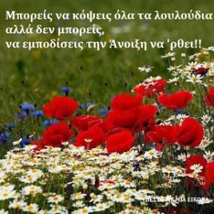 Μπορείς να κόψεις όλα τα λουλούδια  αλλά δεν μπορείς, να εμποδίσεις την Άνοιξη να 'ρθει!! ♥ P. Neruda