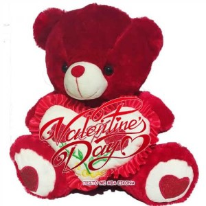Read more about the article Λουλούδια,καρδούλες και αρκουδάκια για  Happy Valentine's Day