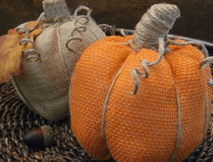 Close uo of pair of fabric pumpkins