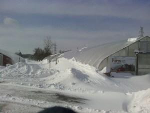 The Farm at St. Joe's on Monday, January 6, 2014.