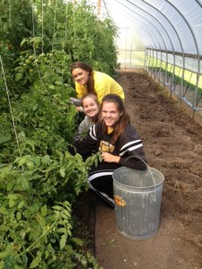 Mercy girls helping in the hoop house