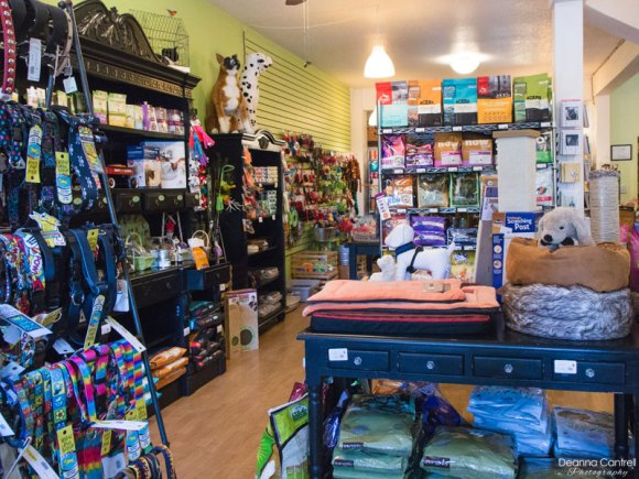 Shelves of leashes, toys, and dog bedding.