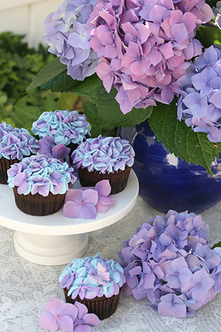 Hydrangea cupcakes with hydrangea by Exuberance Catering.