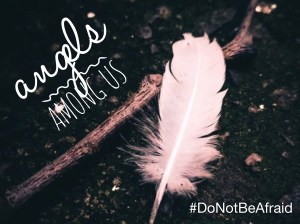 Angels Among Us, Feather