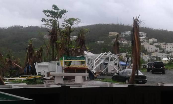 Bordeaux Farmer's Market after Hurricane Irma (We Grow Food Inc. Facebook page)