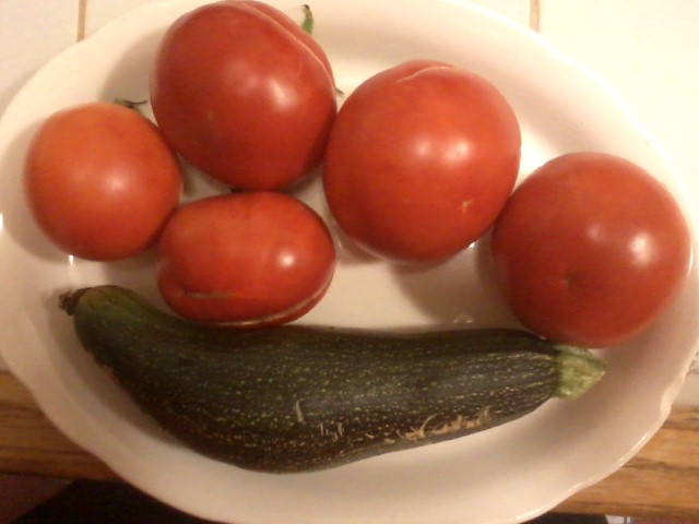 Our first Tomatoes and Zucchini donated to the Quakertown Food Pantry