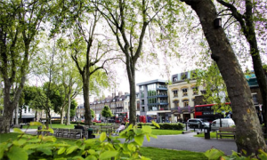 Islington Green. Photograph: Felix Clay/Guardian