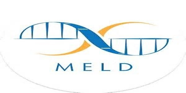 MELD Dating Beyond the Hookup