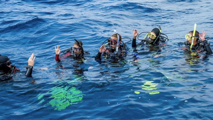 Become A Dive Pro