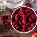 Raspberry Seed Oil Skin Care