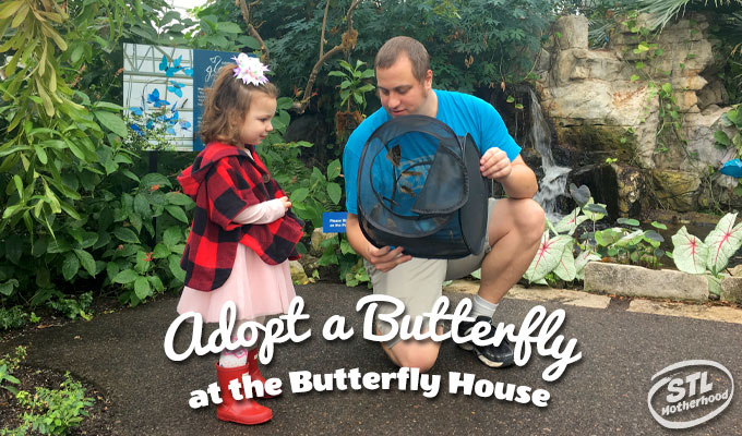 Adopt a Butterfly at the Butterfly House