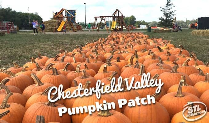 Chesterfield Pumpkin Patch Review