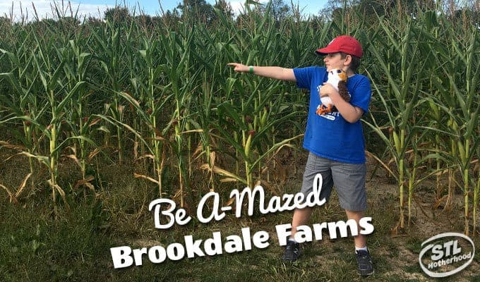 Amazing: Brookdale Farm Corn Maze