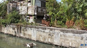 Dwelling with no sanitation.