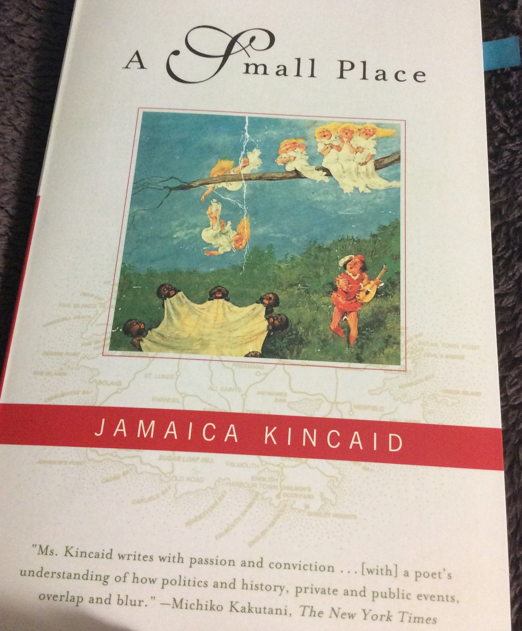 a small place jamaica kincaid questions