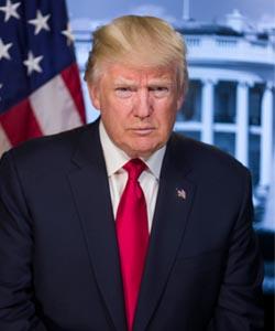 President Donald J Trump