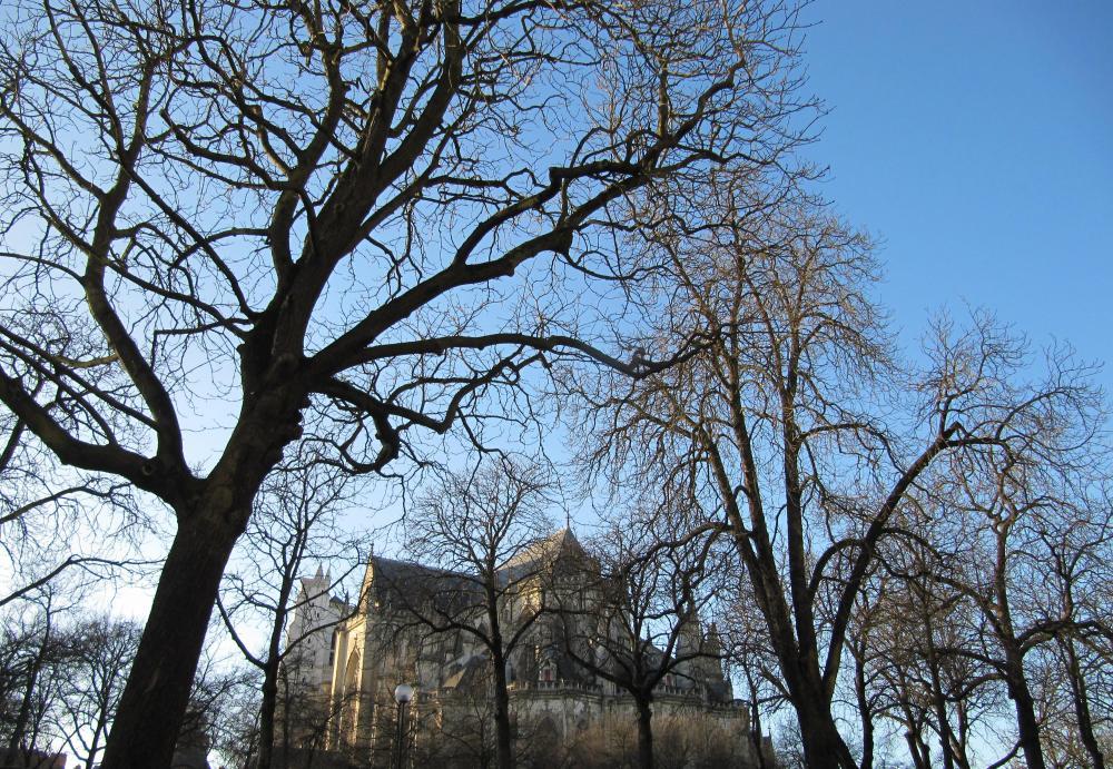 La cathédrale Saint Pierre-Saint Paul à NANTES (1/6)
