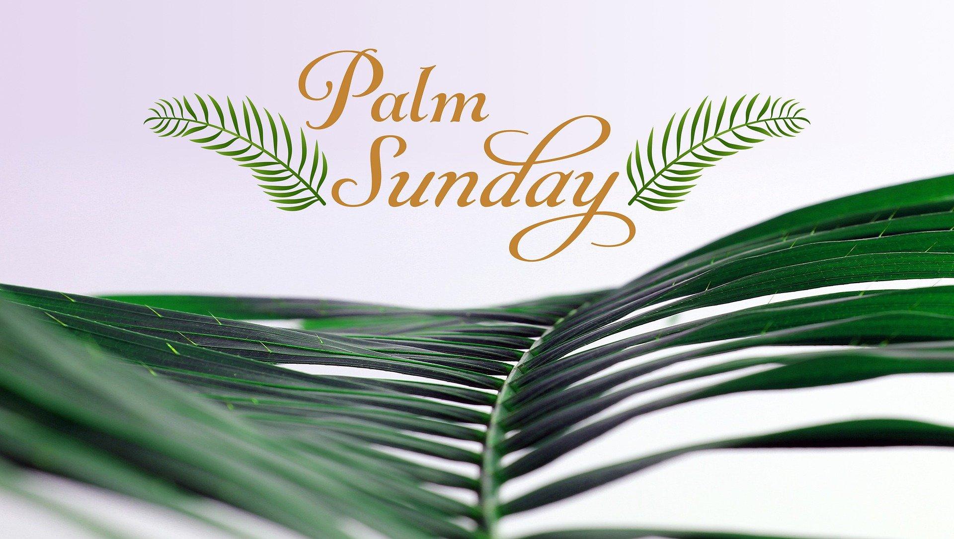 Palm Sunday banner